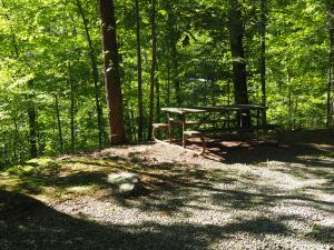 little-creek-park-picnic-table